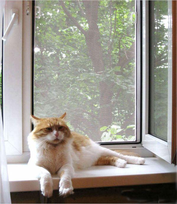Москитная сетка белая антикошка Pet Screen 1600 мм